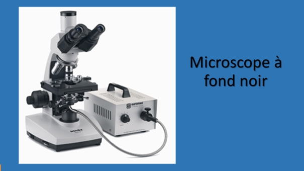 Microscope à fond noir